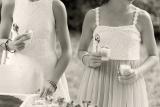 WeddingWP4h