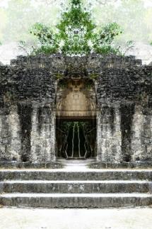 Tikal15_WP
